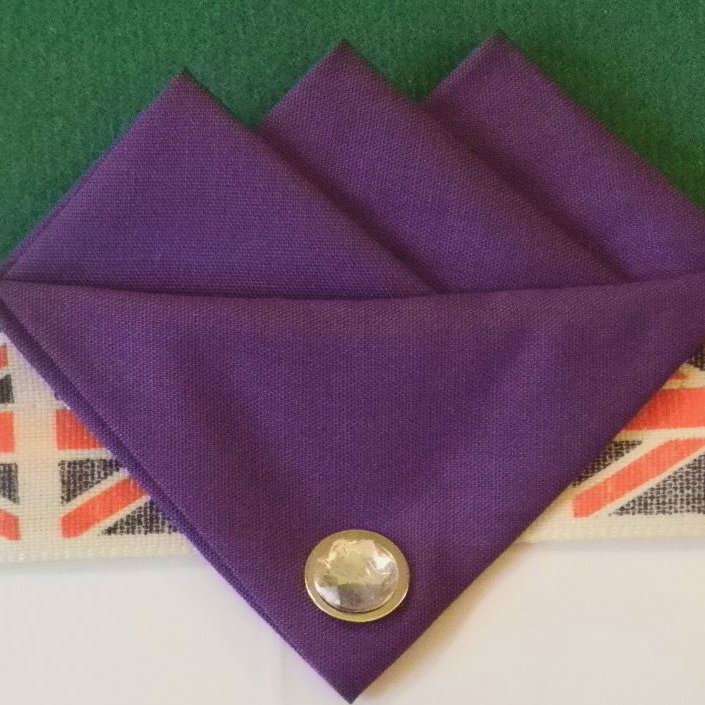 Purple (Dark Purple) Three Point Pocket Hankie & Pin