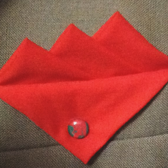 Red (Bright Red) Three Point Pocket Hankie with Red and Green Trojan Pin