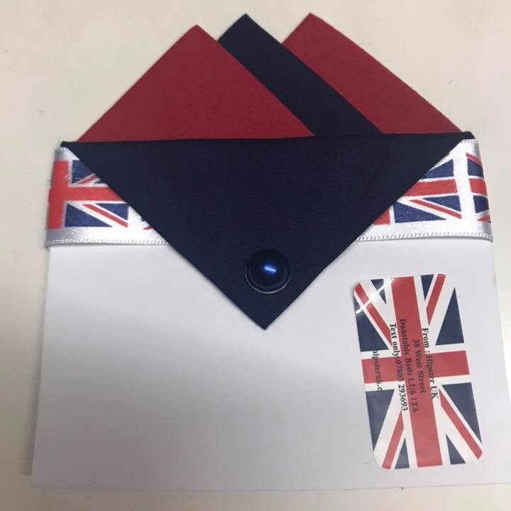 Red & Navy Blue Pocket Hankie with Navy Blue Flap & Pin