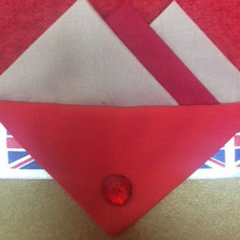 White and Red Hankie With Red Flap and Pin
